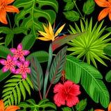 Modelo inconsútil con las plantas tropicales, las hojas y las flores Fondo hecho sin máscara que acorta Fácil de utilizar para Imagenes de archivo