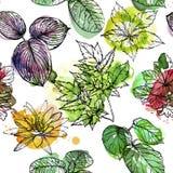 Modelo inconsútil con las ramas y las hojas, elementos exhaustos de la pintura de la acuarela del diseño de la mano libre illustration