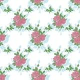 Modelo inconsútil con las rosas Imagen de archivo libre de regalías