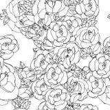 Modelo inconsútil con las rosas Fotografía de archivo libre de regalías