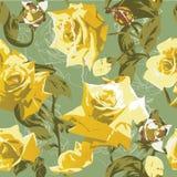 Modelo inconsútil con las rosas amarillas Imagen de archivo