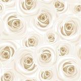 Modelo inconsútil con las rosas blancas Ilustración del vector Imágenes de archivo libres de regalías