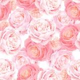 Modelo inconsútil con las rosas del rosa del color de la elegancia stock de ilustración