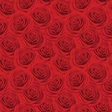 Modelo inconsútil con las rosas rojas Fotografía de archivo libre de regalías