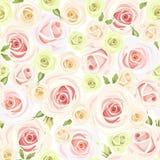 Modelo inconsútil con las rosas rosadas y blancas Ilustración del vector Foto de archivo libre de regalías