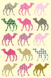 Modelo inconsútil con los camellos Imágenes de archivo libres de regalías