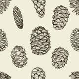Modelo inconsútil con los conos del pino ilustración del vector
