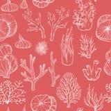 Modelo inconsútil con los corales exhaustos de la mano stock de ilustración