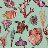 Modelo inconsútil con los corales exhaustos y la vida marina de la mano marina libre illustration