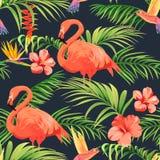 Modelo inconsútil con los flamencos, los colibríes y las plantas tropicales ilustración del vector
