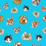 Modelo inconsútil con los gatos en un fondo azul ilustración del vector