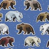 Modelo inconsútil con los osos polares y marrones libre illustration