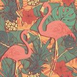 Modelo inconsútil con los pájaros y las piñas del flamenco Fotos de archivo libres de regalías