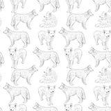 Modelo inconsútil con los perros pastor Dibujo de bosquejo Contorno negro en un fondo blanco Imagen de archivo libre de regalías