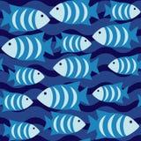 Modelo inconsútil con los pescados Fotografía de archivo libre de regalías
