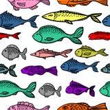 Modelo inconsútil con los pescados Imagen de archivo