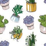 Modelo inconsútil con los succulents y el cactus dibujados mano en potes Ejemplo colorido del vector en el fondo blanco Imágenes de archivo libres de regalías