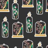 Modelo inconsútil con los terrarios florales dibujados mano Foto de archivo