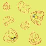 Modelo inconsútil con los tulipanes stock de ilustración
