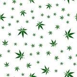 Modelo inconsútil con marijuana en el fondo blanco Textura del vector Imagen de archivo