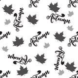Modelo inconsútil con otoño de las letras Tipografía del vector, letras de la mano Imagenes de archivo