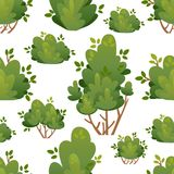 Modelo inconsútil de arbustos y de árboles naturales del jardín para la cabaña del parque y ejemplo del vector de la yarda con el Fotos de archivo