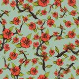 Modelo inconsútil de flores de cerezo Flores anaranjadas brillantes abstractas en una rama con las hojas en un pálido - fondo ver Fotografía de archivo libre de regalías