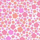 Modelo inconsútil de flores rosadas y anaranjadas lindas en el fondo blanco Imagen de archivo libre de regalías