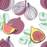 Modelo inconsútil de higos Fruta, hoja y pedazo de higo Ejemplo exhausto de la mano del vector fijado en estilo plano de moda mod libre illustration
