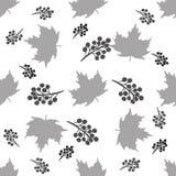 Modelo inconsútil de hojas de arce en un fondo blanco Imagen de archivo libre de regalías