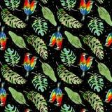 Modelo inconsútil de hojas de palma tropicales y de pájaros coloridos en fondo negro Ilustración de la acuarela stock de ilustración