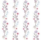 Modelo inconsútil de la acuarela con las flores Diseño floral del fondo Imagen de archivo