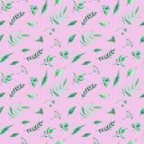 Modelo inconsútil de la acuarela con las hierbas y las hojas verdes en fondo color de rosa stock de ilustración