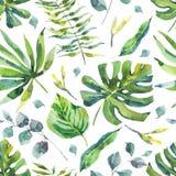 Modelo inconsútil de la acuarela con las hojas tropicales ilustración del vector