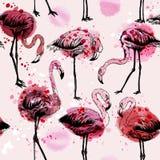 Modelo inconsútil de la acuarela con los pájaros del flamenco ilustración del vector