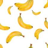 Modelo inconsútil de la acuarela con los plátanos Diseño tropical dibujado mano Foto de archivo libre de regalías