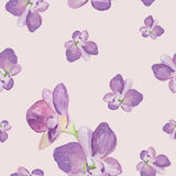 Modelo inconsútil de la acuarela de flores exóticas Fotografía de archivo libre de regalías