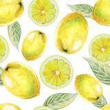 Modelo inconsútil de la acuarela de la fruta del limón Foto de archivo libre de regalías