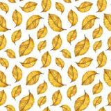 Modelo inconsútil de la acuarela de las hojas del amarillo del otoño Imágenes de archivo libres de regalías