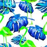 Modelo inconsútil de la acuarela Ejemplo pintado a mano de hojas y de flores tropicales Adorno tropical del verano con el modelo  Fotos de archivo