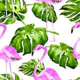 Modelo inconsútil de la acuarela Ejemplo pintado a mano de hojas y de flores tropicales Adorno tropical del verano con el modelo  Fotos de archivo libres de regalías