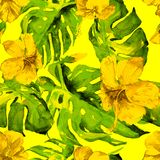 Modelo inconsútil de la acuarela Ejemplo pintado a mano de hojas y de flores tropicales Adorno tropical del verano con el modelo  Imagen de archivo libre de regalías