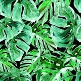 Modelo inconsútil de la acuarela Ejemplo pintado a mano de hojas y de flores tropicales Adorno tropical del verano con el modelo  Foto de archivo