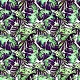 Modelo inconsútil de la acuarela Ejemplo pintado a mano de hojas y de flores tropicales Adorno tropical del verano con Liana Patt Fotos de archivo