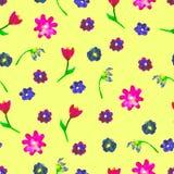 Modelo inconsútil de la acuarela Flores coloridas en fondo amarillo Ejemplo dibujado mano brillante Modelo feliz de Pascua Imagen de archivo libre de regalías