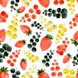Modelo inconsútil de la acuarela de la fresa, del rojo, del oro y de la grosella negra en el fondo blanco fotografía de archivo libre de regalías