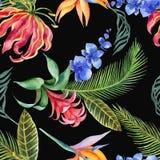 Modelo inconsútil de la acuarela de hojas tropicales y de flores exóticas brillantes aisladas en el fondo blanco Imágenes de archivo libres de regalías
