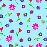 Modelo inconsútil de la acuarela Huevos y flores coloridos en fondo azul Ejemplo dibujado mano brillante Pascua feliz Imagen de archivo
