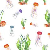 Modelo inconsútil de la acuarela de la medusa abigarrada y de plantas de agua stock de ilustración