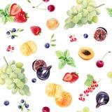 Modelo inconsútil de la acuarela pintada a mano con las frutas y las bayas ilustración del vector